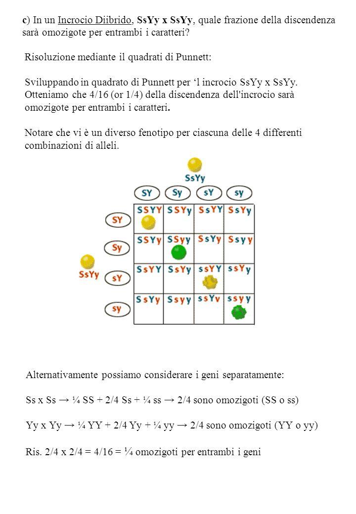 c) In un Incrocio Diibrido, SsYy x SsYy, quale frazione della discendenza sarà omozigote per entrambi i caratteri.