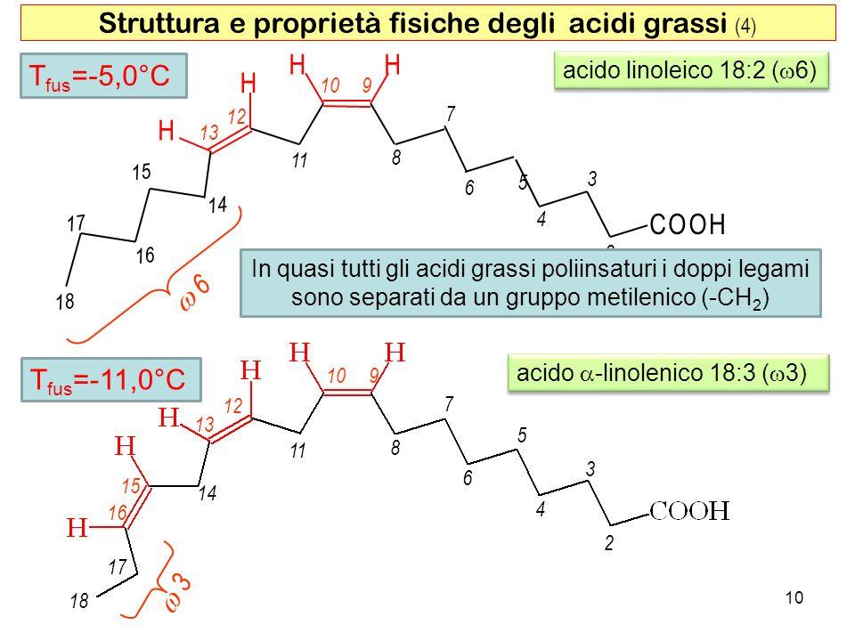 acido linoleico 18:2 ( 6) HH H H COOH 2 4 6 8 3 5 7 910 11 13 12 6 15 17 14 16 18 10 Struttura e proprietà fisiche degli acidi grassi (4) 2 4 6 8 3 5 7 910 11 13 12 14 15 16 17 18 3 acido -linolenico 18:3 ( 3) T fus =-5,0°C T fus =-11,0°C In quasi tutti gli acidi grassi poliinsaturi i doppi legami sono separati da un gruppo metilenico (-CH 2 )