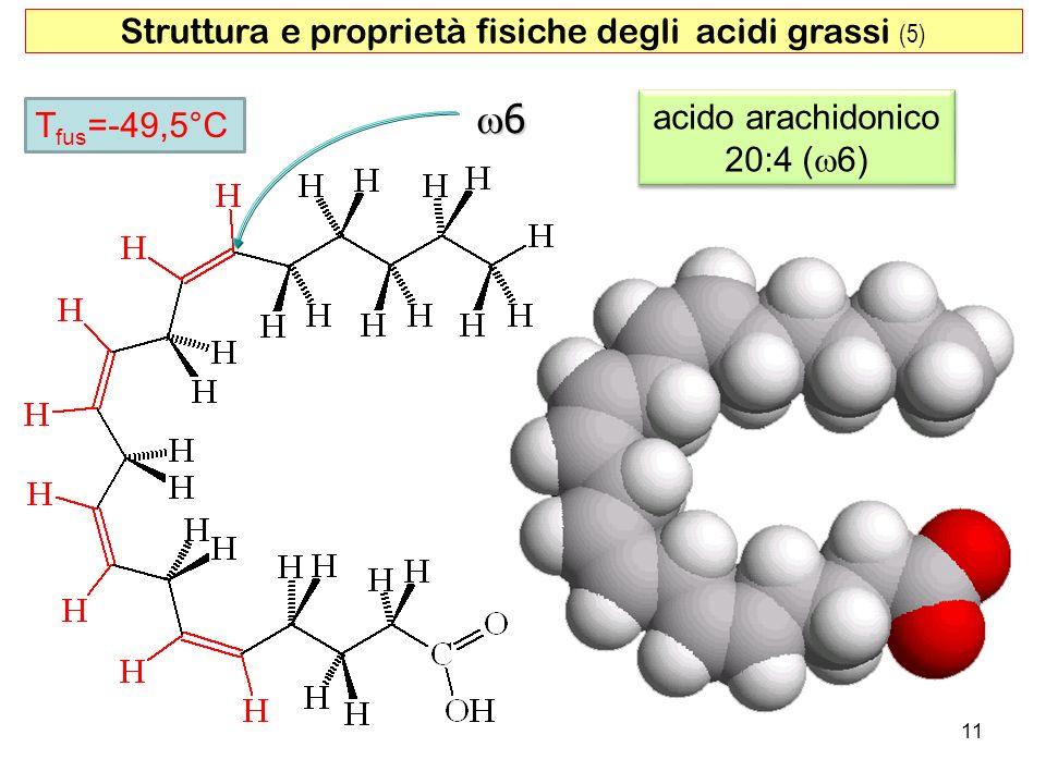 acido arachidonico 20:4 ( 6) acido arachidonico 20:4 ( 6) 6 11 T fus =-49,5°C Struttura e proprietà fisiche degli acidi grassi (5)