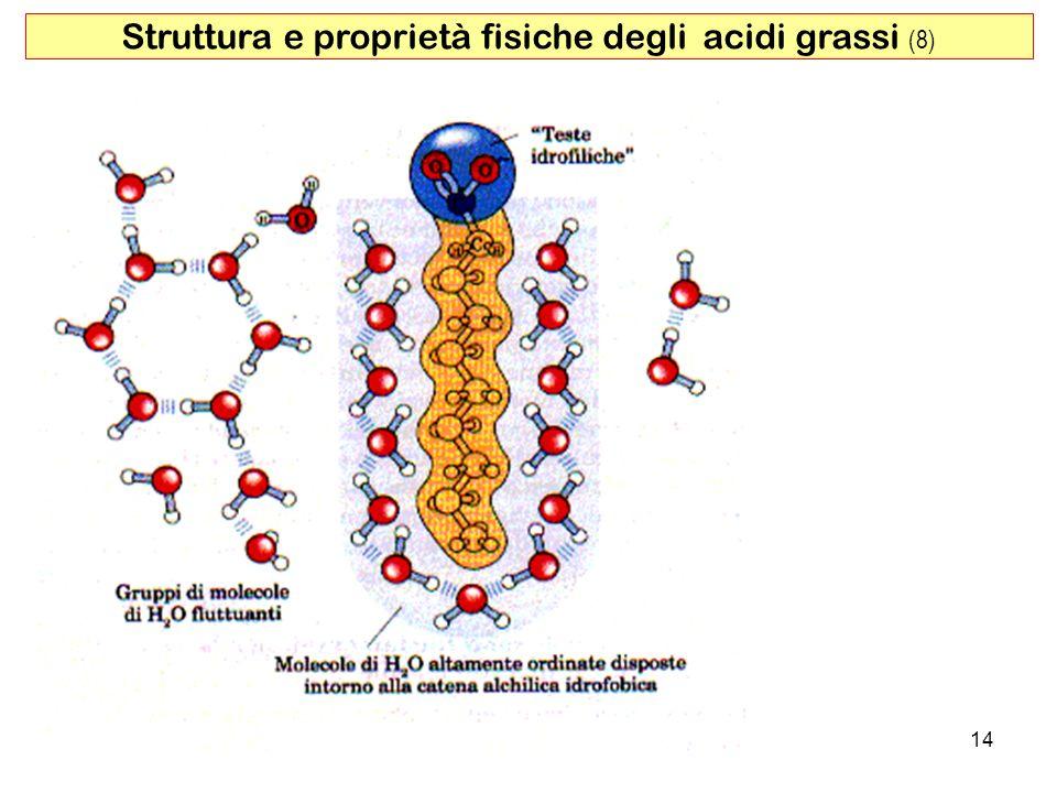 14 Struttura e proprietà fisiche degli acidi grassi (8)