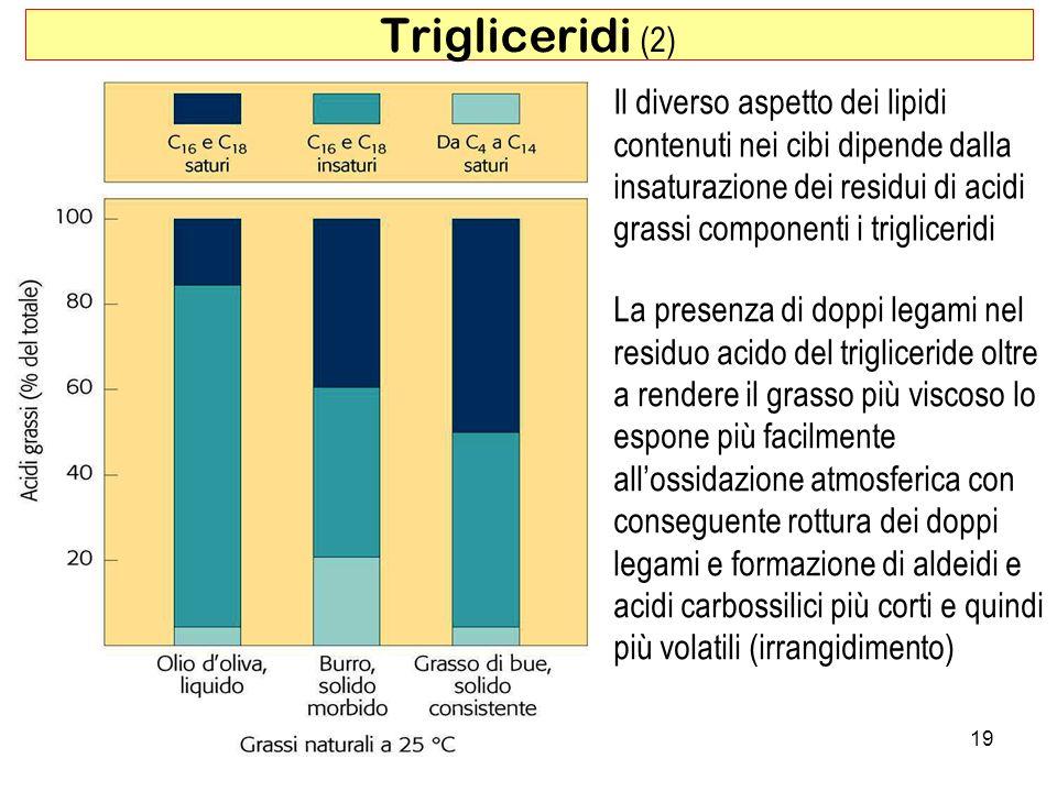 19 Trigliceridi (2) La presenza di doppi legami nel residuo acido del trigliceride oltre a rendere il grasso più viscoso lo espone più facilmente allossidazione atmosferica con conseguente rottura dei doppi legami e formazione di aldeidi e acidi carbossilici più corti e quindi più volatili (irrangidimento) Il diverso aspetto dei lipidi contenuti nei cibi dipende dalla insaturazione dei residui di acidi grassi componenti i trigliceridi