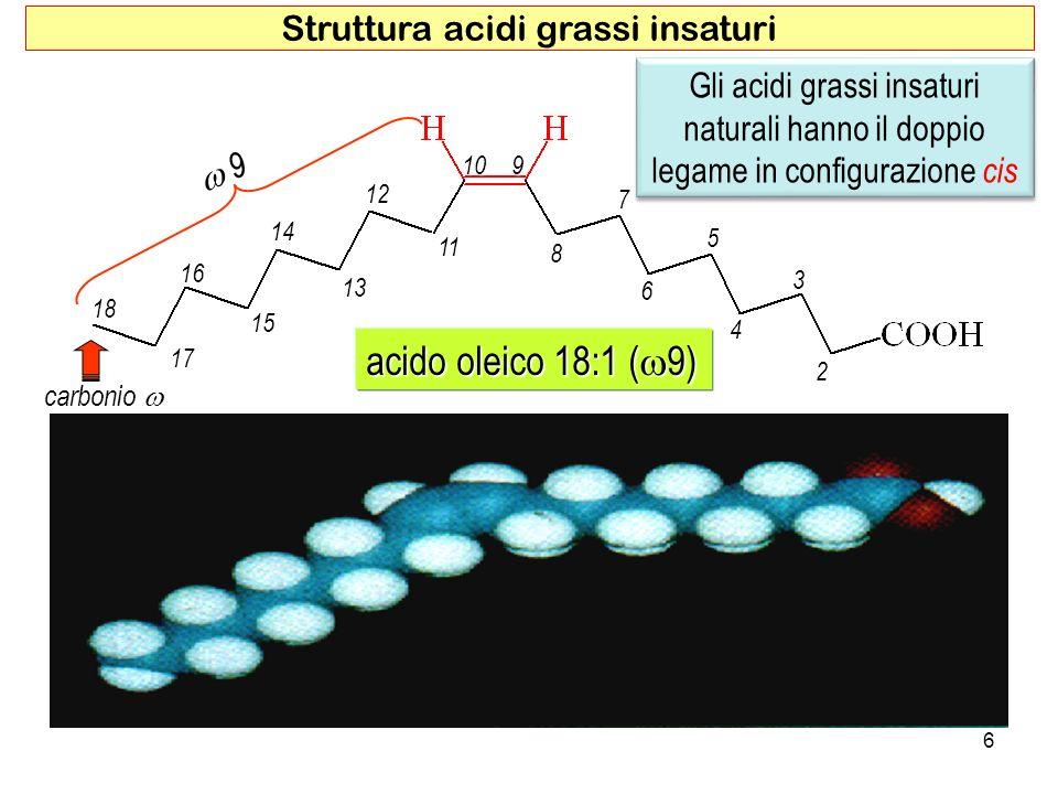 acido oleico 18:1 ( 9) 9 9 2 4 6 8 3 5 7 910 11 13 15 17 12 14 16 18 carbonio carbonio 6 Struttura acidi grassi insaturi Gli acidi grassi insaturi naturali hanno il doppio legame in configurazione cis