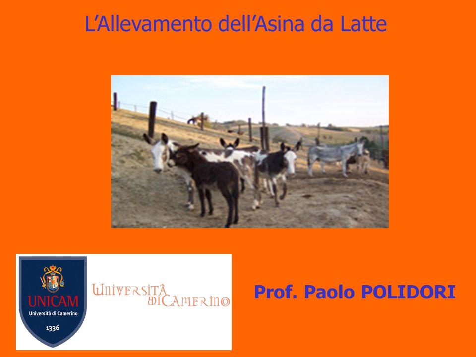 LAllevamento dellAsina da Latte Prof. Paolo POLIDORI