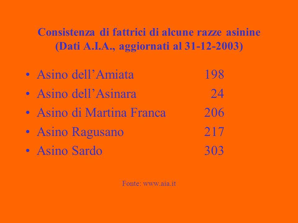 Consistenza di fattrici di alcune razze asinine (Dati A.I.A., aggiornati al 31-12-2003) Asino dellAmiata198 Asino dellAsinara 24 Asino di Martina Franca 206 Asino Ragusano217 Asino Sardo303 Fonte: www.aia.it