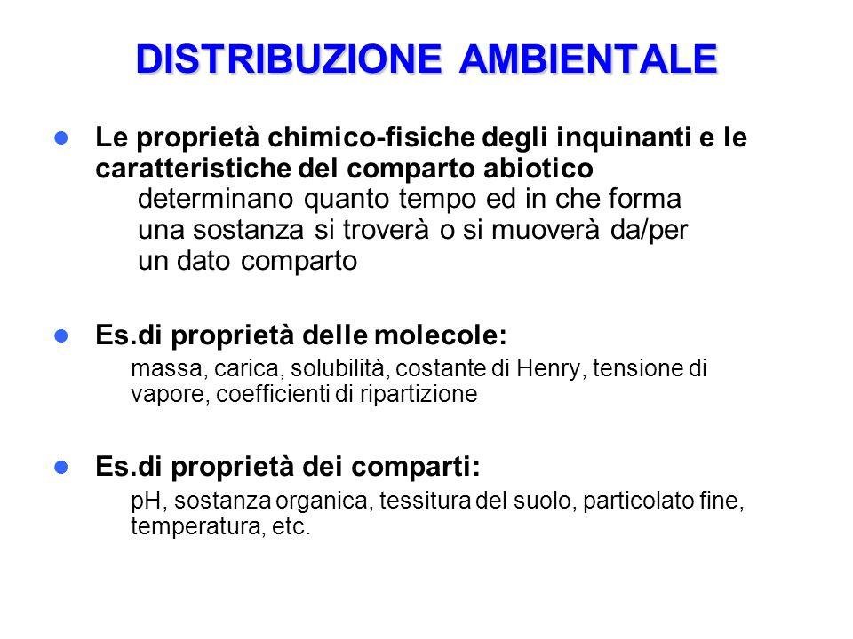 DISTRIBUZIONE AMBIENTALE Le proprietà chimico-fisiche degli inquinanti e le caratteristiche del comparto abiotico determinano quanto tempo ed in che f
