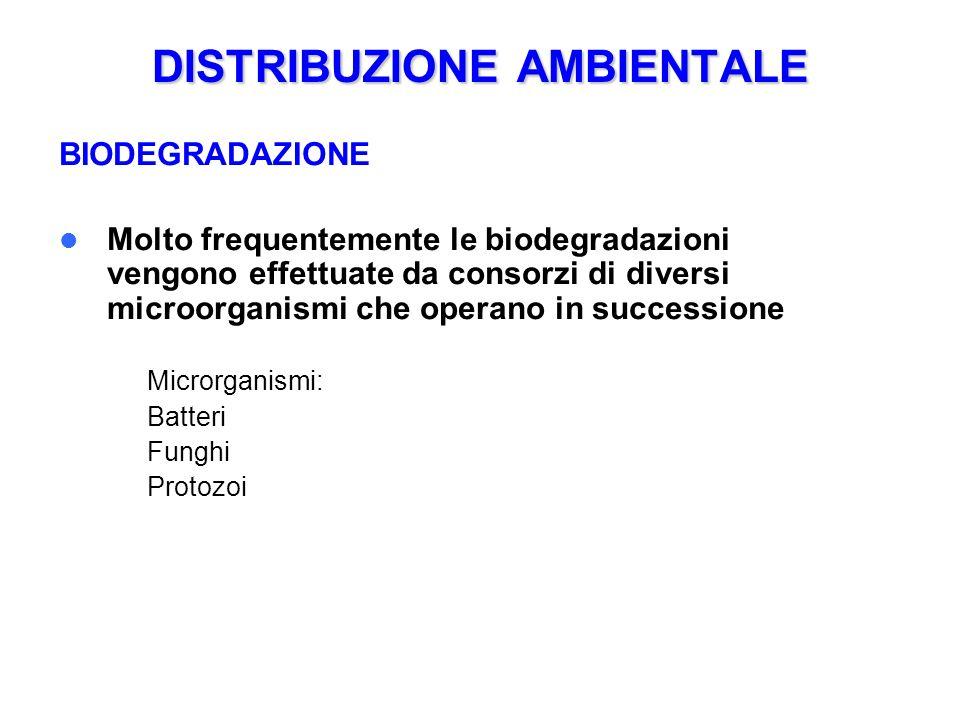 DISTRIBUZIONE AMBIENTALE BIODEGRADAZIONE Molto frequentemente le biodegradazioni vengono effettuate da consorzi di diversi microorganismi che operano