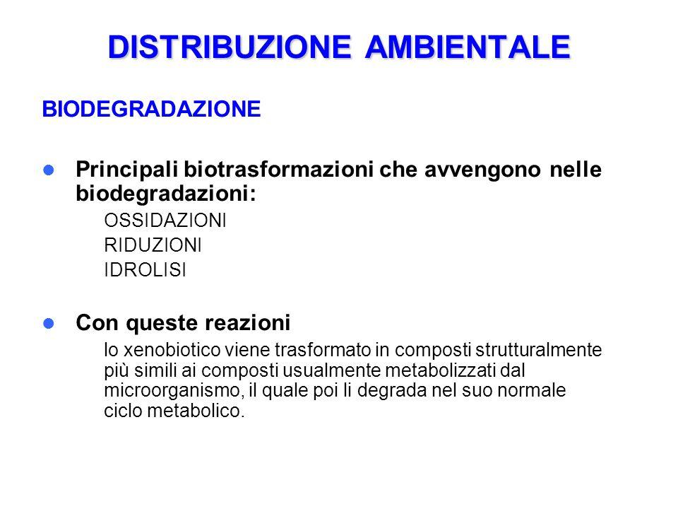 DISTRIBUZIONE AMBIENTALE BIODEGRADAZIONE Principali biotrasformazioni che avvengono nelle biodegradazioni: – OSSIDAZIONI – RIDUZIONI – IDROLISI Con qu