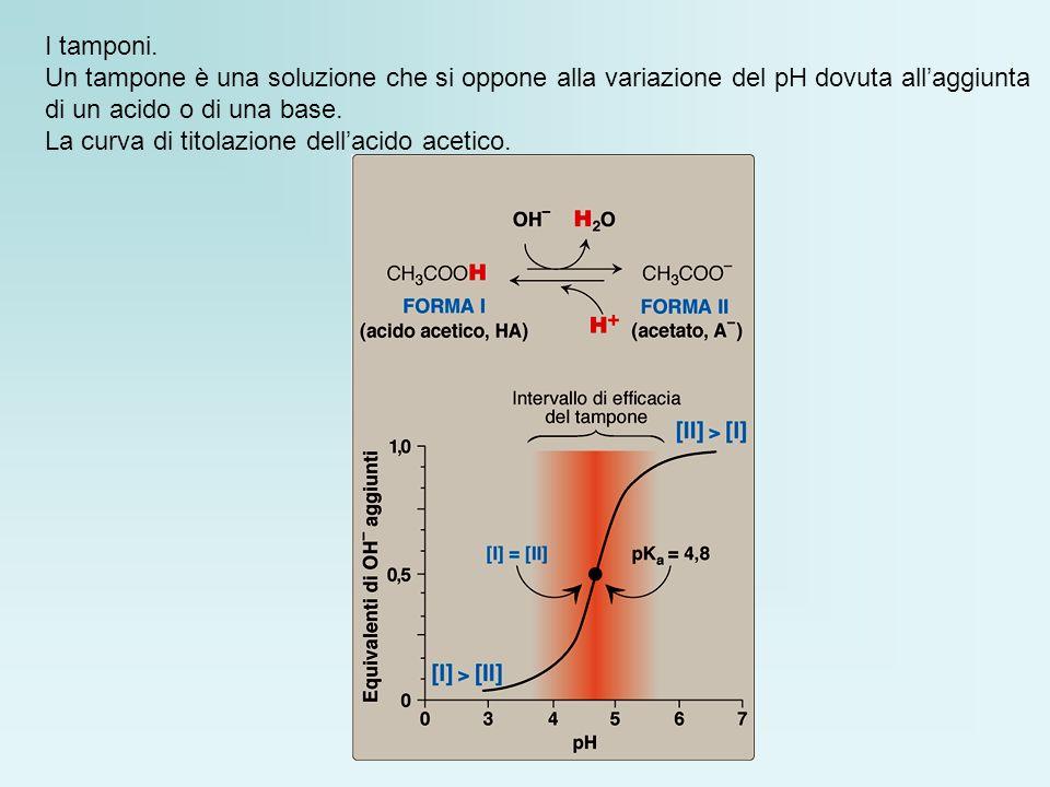 I tamponi. Un tampone è una soluzione che si oppone alla variazione del pH dovuta allaggiunta di un acido o di una base. La curva di titolazione della
