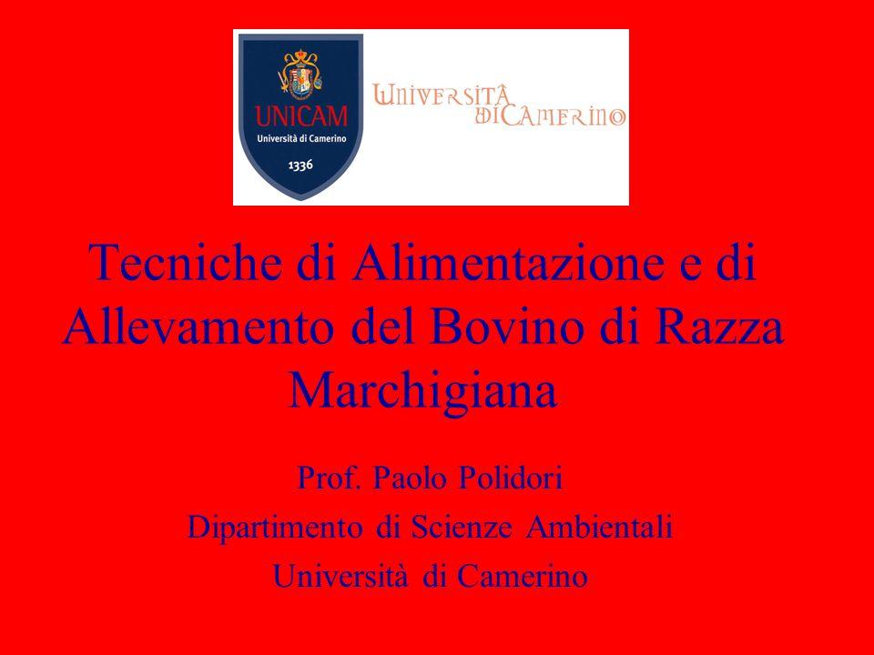 Tecniche di Alimentazione e di Allevamento del Bovino di Razza Marchigiana Prof. Paolo Polidori Dipartimento di Scienze Ambientali Università di Camer