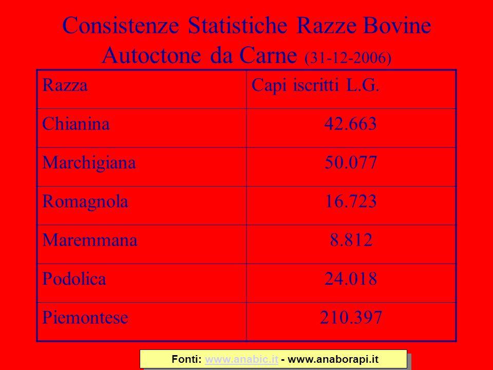 Consistenze Statistiche Razze Bovine Autoctone da Carne (31-12-2006) RazzaCapi iscritti L.G. Chianina42.663 Marchigiana50.077 Romagnola16.723 Maremman