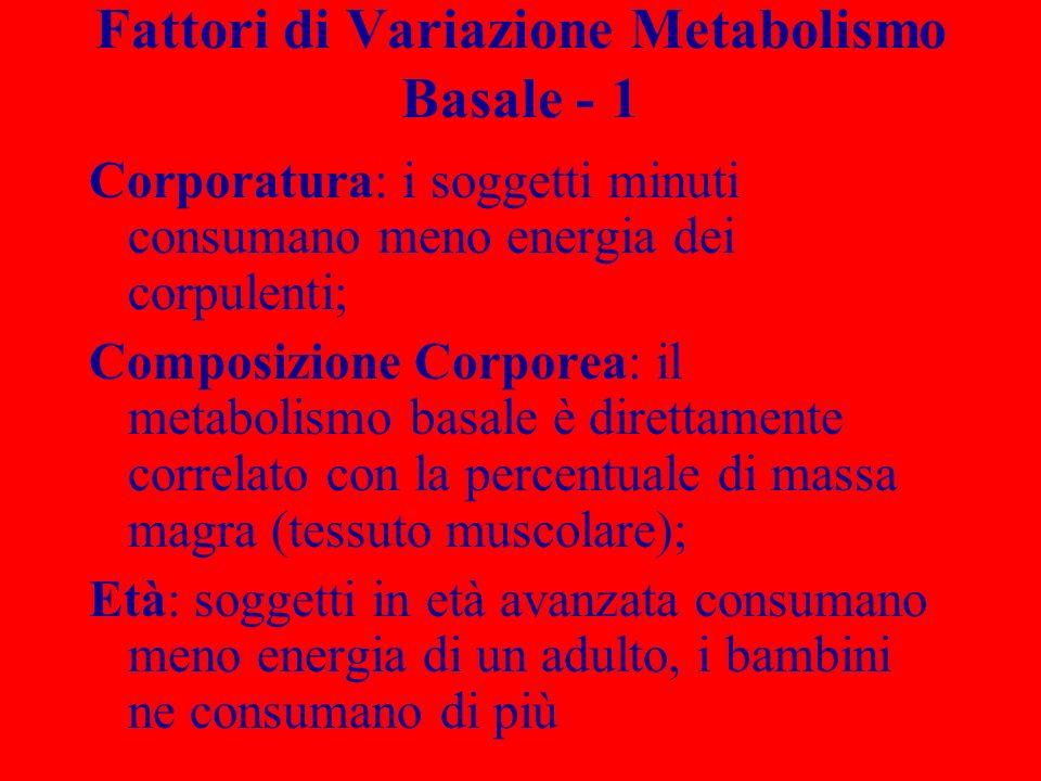 Fattori di Variazione Metabolismo Basale - 1 Corporatura: i soggetti minuti consumano meno energia dei corpulenti; Composizione Corporea: il metabolis