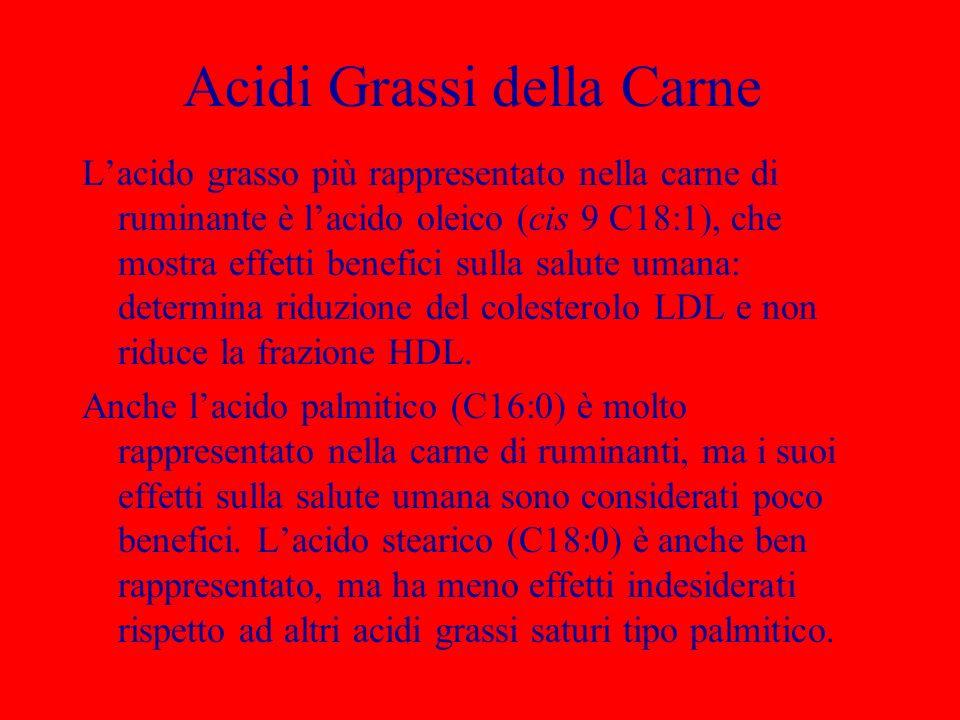 Acidi Grassi della Carne Lacido grasso più rappresentato nella carne di ruminante è lacido oleico (cis 9 C18:1), che mostra effetti benefici sulla sal