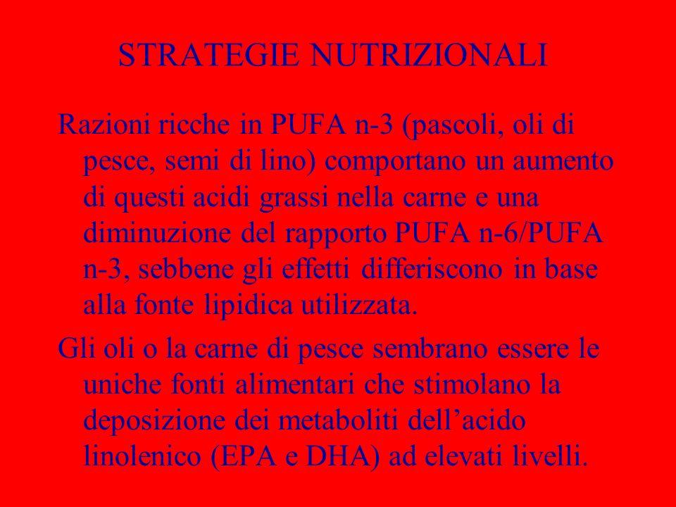 STRATEGIE NUTRIZIONALI Razioni ricche in PUFA n-3 (pascoli, oli di pesce, semi di lino) comportano un aumento di questi acidi grassi nella carne e una