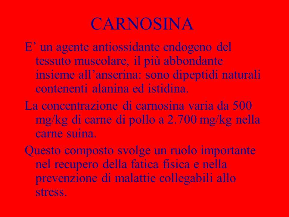 CARNOSINA E un agente antiossidante endogeno del tessuto muscolare, il più abbondante insieme allanserina: sono dipeptidi naturali contenenti alanina