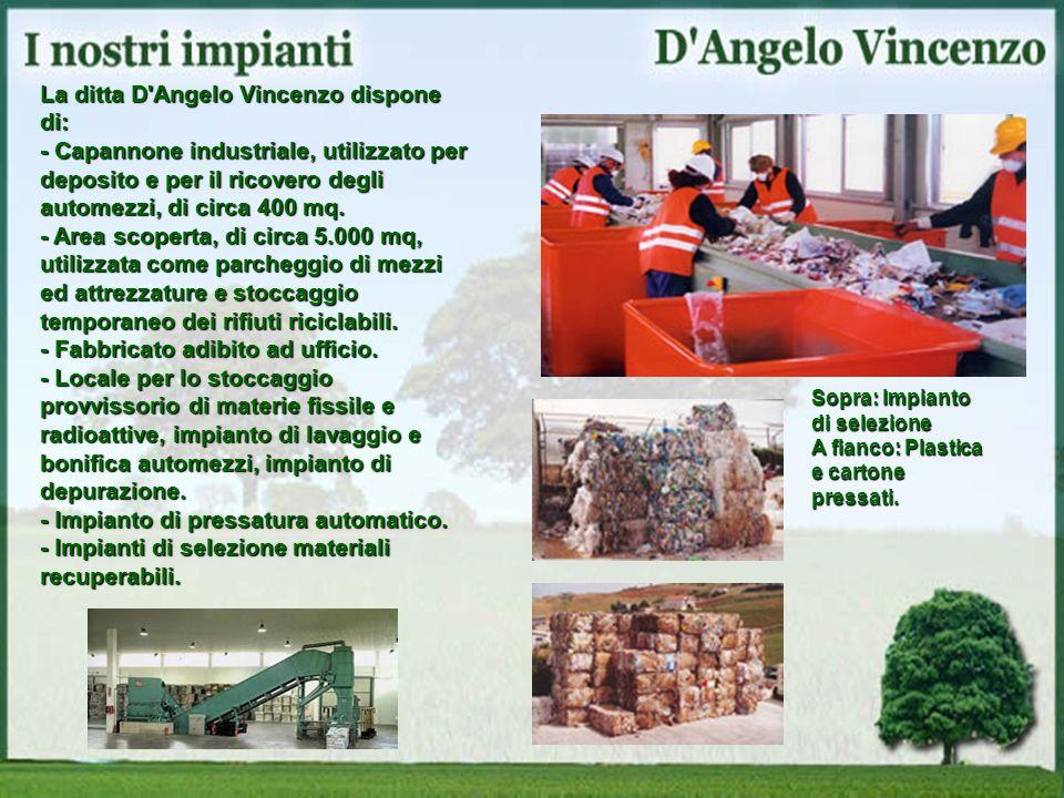 La ditta D'Angelo Vincenzo dispone di: - Capannone industriale, utilizzato per deposito e per il ricovero degli automezzi, di circa 400 mq. - Area sco