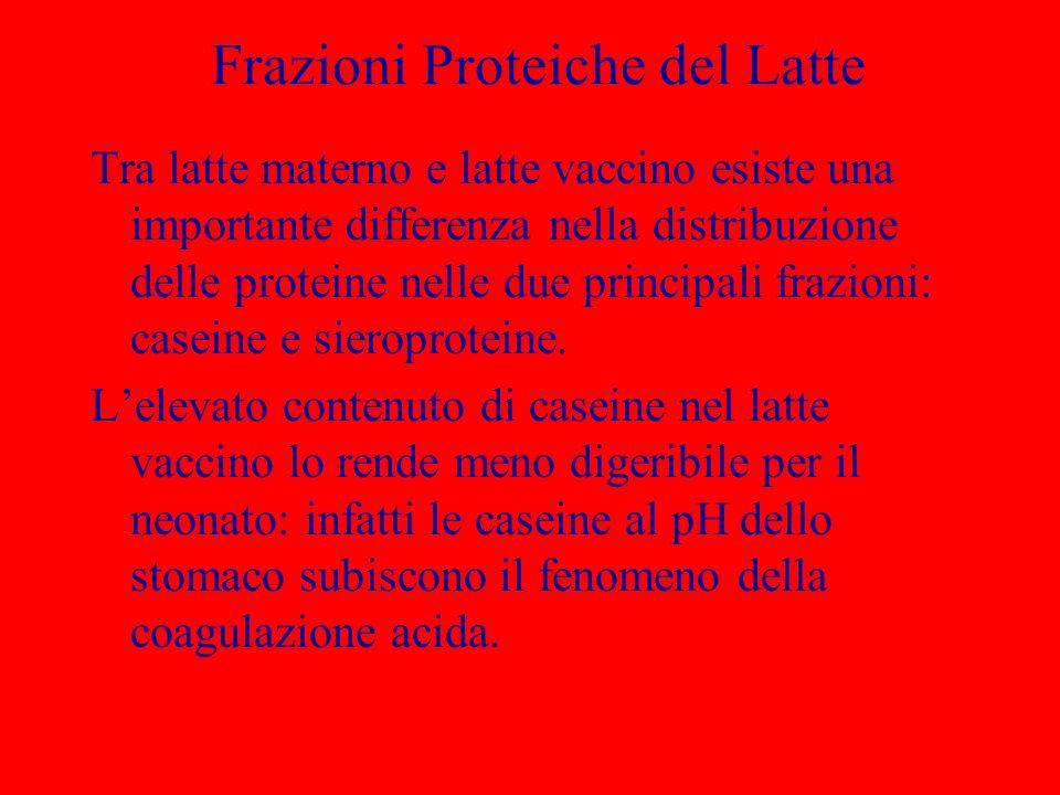Frazioni Proteiche del Latte Tra latte materno e latte vaccino esiste una importante differenza nella distribuzione delle proteine nelle due principal