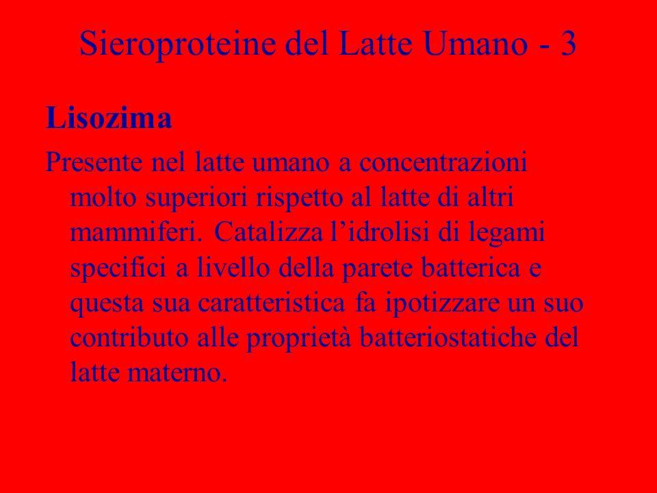 Sieroproteine del Latte Umano - 3 Lisozima Presente nel latte umano a concentrazioni molto superiori rispetto al latte di altri mammiferi. Catalizza l
