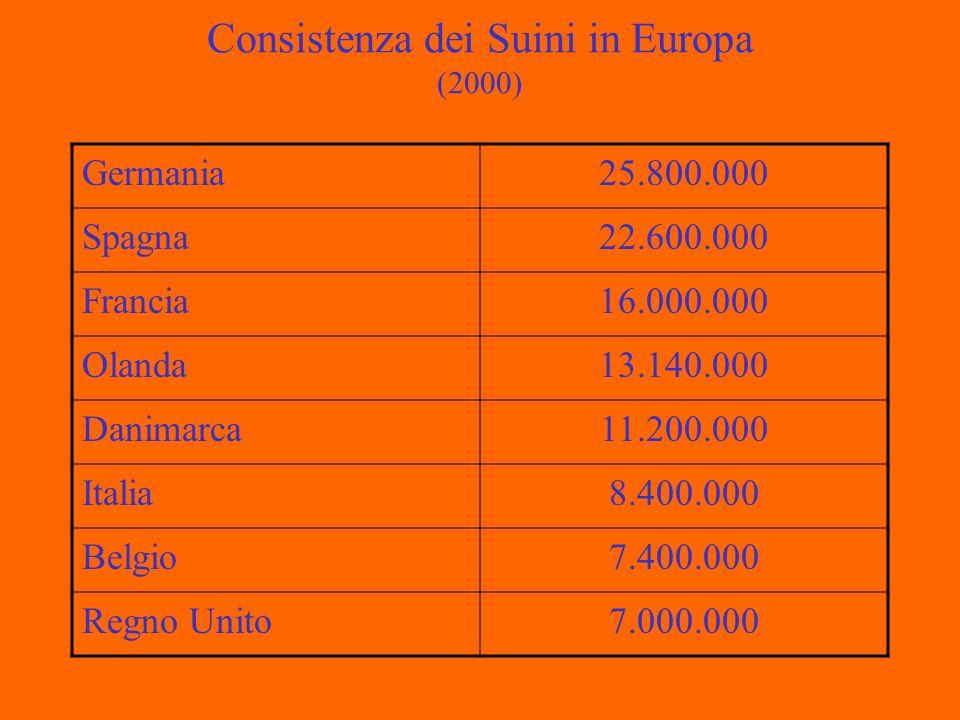 Consistenza dei Suini in Europa (2000) Germania25.800.000 Spagna22.600.000 Francia16.000.000 Olanda13.140.000 Danimarca11.200.000 Italia8.400.000 Belgio7.400.000 Regno Unito7.000.000