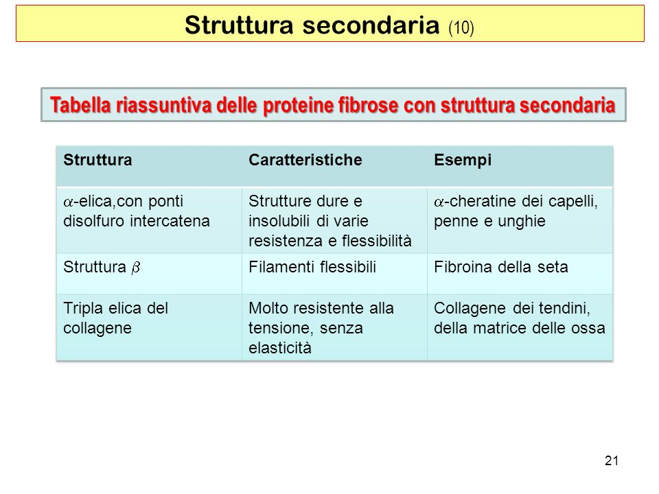21 Struttura secondaria (10) Tabella riassuntiva delle proteine fibrose con struttura secondaria