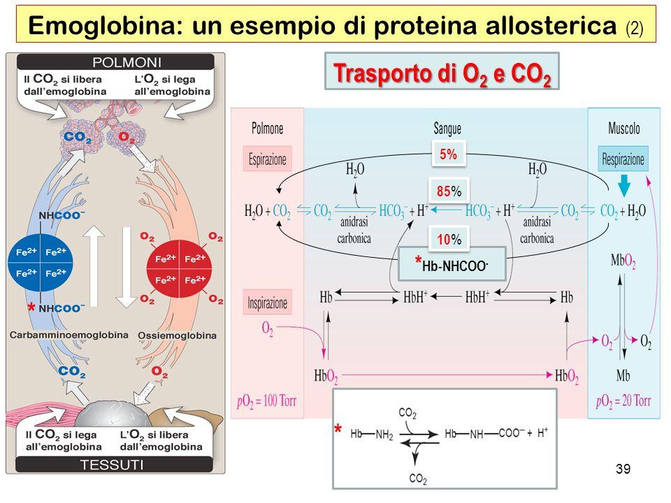 Trasporto di O 2 e CO 2 5% 85 % * Hb-NHCOO - * 39 Emoglobina: un esempio di proteina allosterica (2) * 10 %