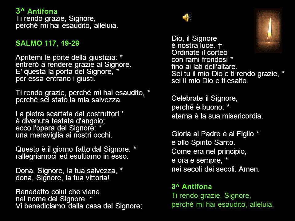 2^ Antifona Mia forza e mio canto è il Signore, alleluia. SALMO 117, 10-18 (II) Tutti i popoli mi hanno circondato, * ma nel nome del Signore li ho sc