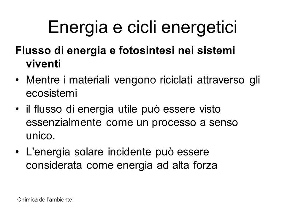 Chimica dell'ambiente Energia e cicli energetici Flusso di energia e fotosintesi nei sistemi viventi Mentre i materiali vengono riciclati attraverso g