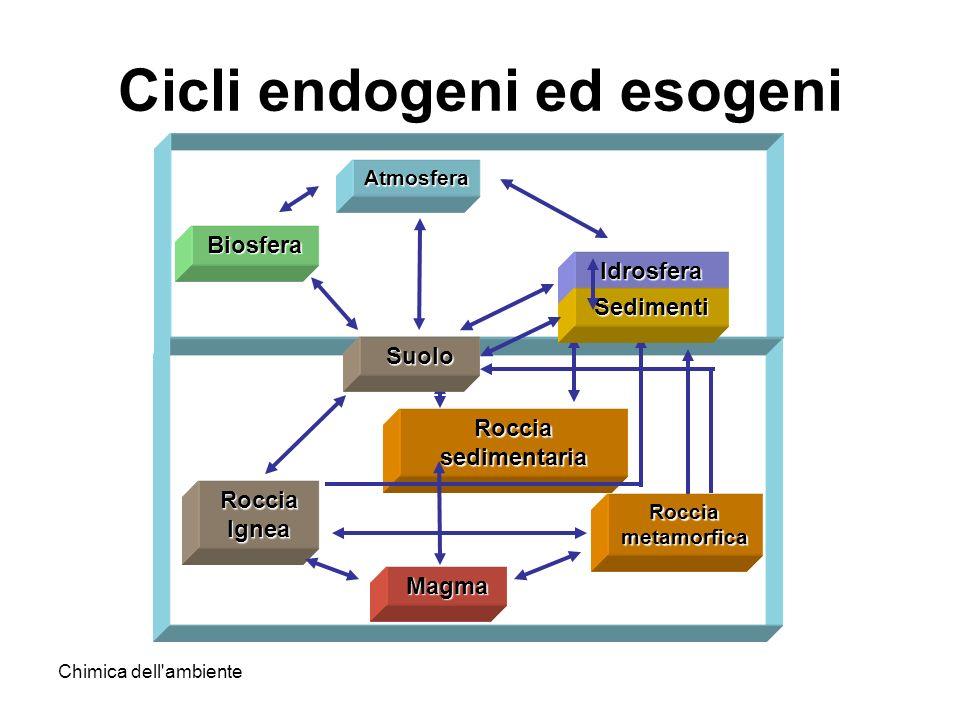 Chimica dell'ambiente Cicli endogeni ed esogeni Atmosfera Roccia sedimentaria Roccia Ignea Magma Biosfera Roccia metamorfica Idrosfera Sedimenti Suolo