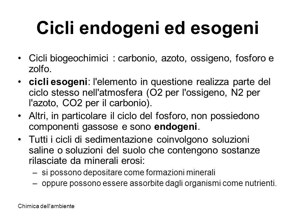 Chimica dell'ambiente Cicli endogeni ed esogeni Cicli biogeochimici : carbonio, azoto, ossigeno, fosforo e zolfo. cicli esogeni: l'elemento in questio