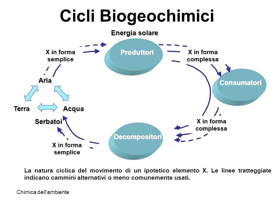 Chimica dell'ambiente Produttori Consumatori Decompositori Energia solare Aria TerraAcqua Serbatoi X in forma semplice X in forma complessa La natura