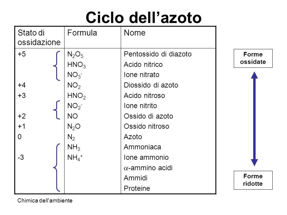 Chimica dell'ambiente Ciclo dellazoto Stato di ossidazione FormulaNome +5 +4 +3 +2 +1 0 -3 N 2 O 5 HNO 3 NO 3 - NO 2 HNO 2 NO 2 - NO N 2 O N 2 NH 3 NH