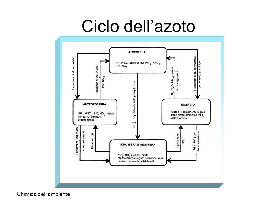 Chimica dell'ambiente Ciclo dellazoto