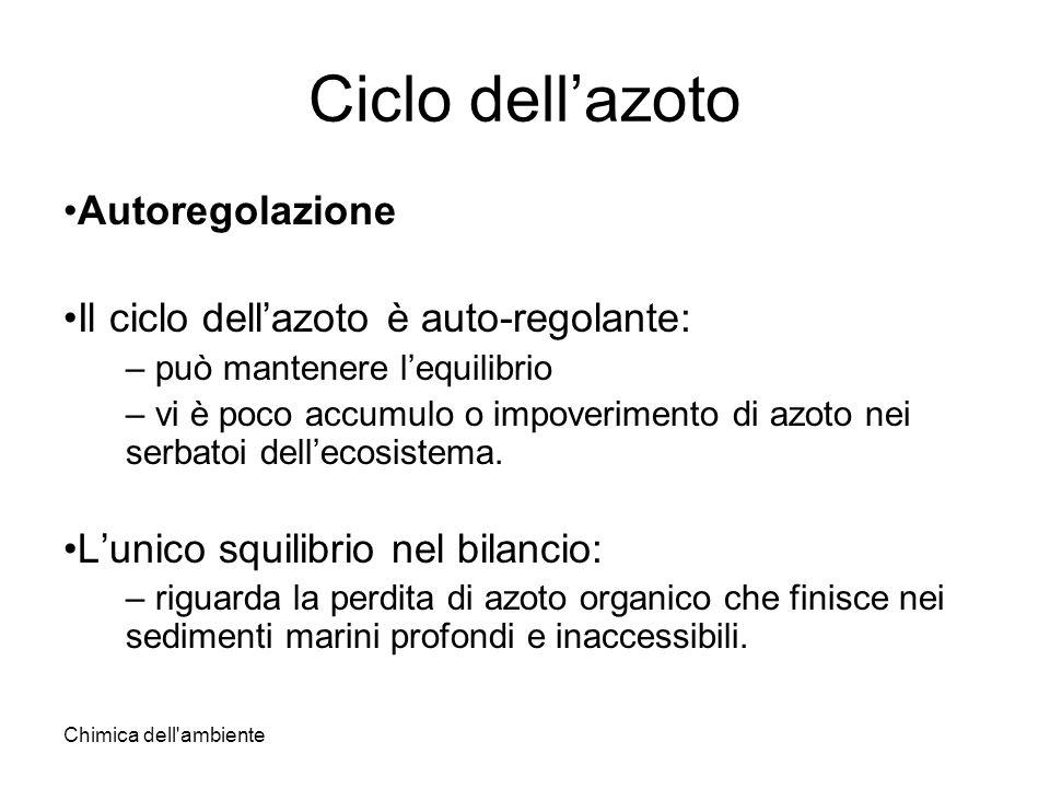 Chimica dell'ambiente Ciclo dellazoto Autoregolazione Il ciclo dellazoto è auto-regolante: – può mantenere lequilibrio – vi è poco accumulo o impoveri