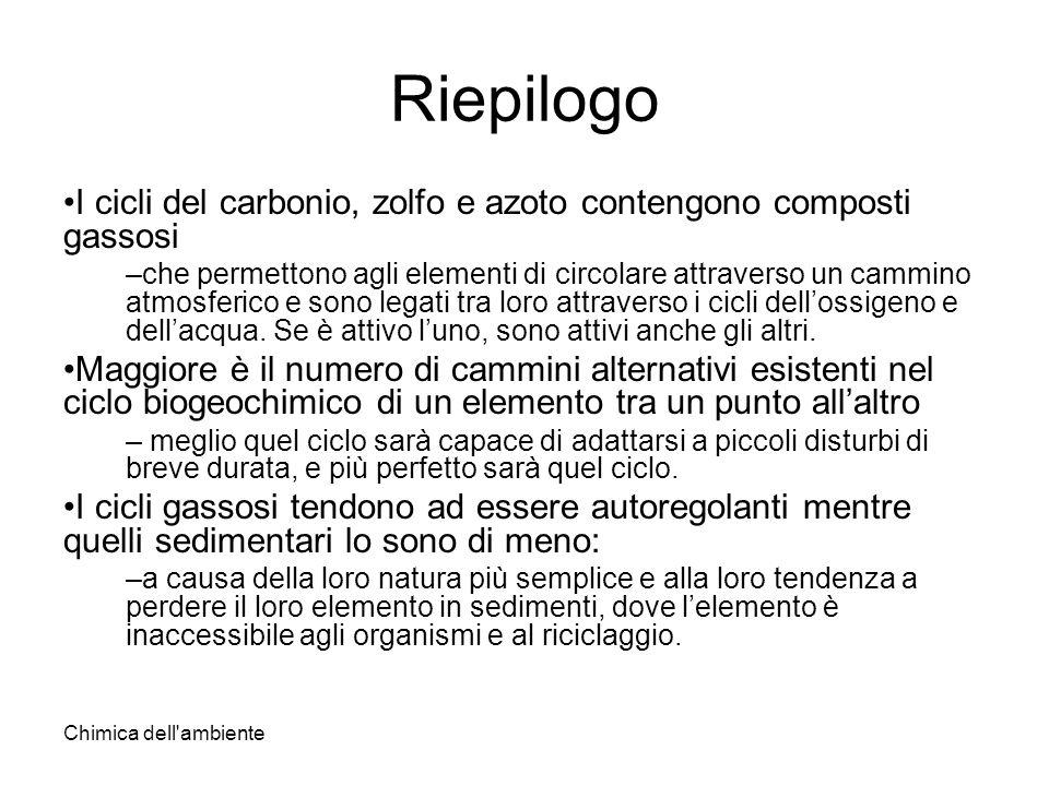 Chimica dell'ambiente Riepilogo I cicli del carbonio, zolfo e azoto contengono composti gassosi –che permettono agli elementi di circolare attraverso
