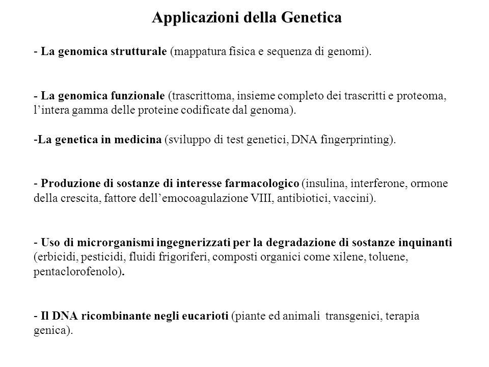 Applicazioni della Genetica - La genomica strutturale (mappatura fisica e sequenza di genomi).