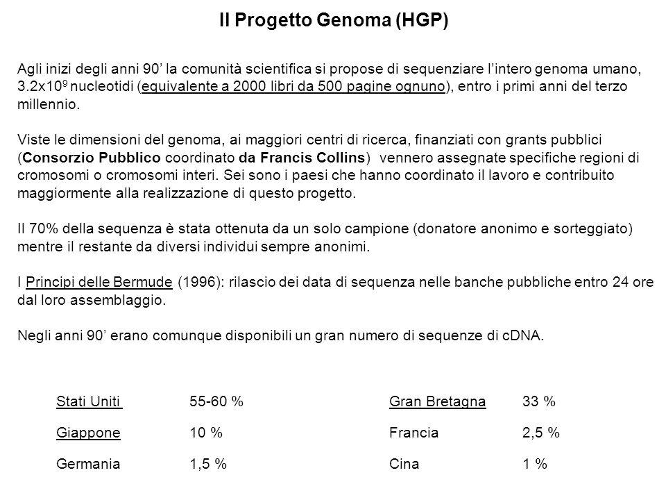 Il Progetto Genoma (HGP) Agli inizi degli anni 90 la comunità scientifica si propose di sequenziare lintero genoma umano, 3.2x10 9 nucleotidi (equivalente a 2000 libri da 500 pagine ognuno), entro i primi anni del terzo millennio.