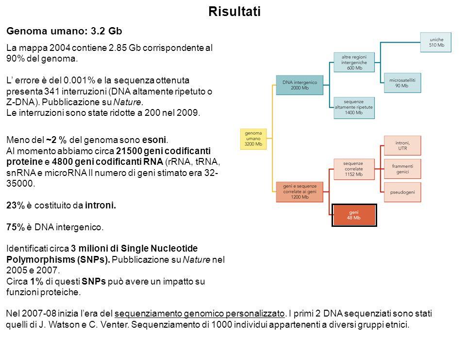 Genoma umano: 3.2 Gb La mappa 2004 contiene 2.85 Gb corrispondente al 90% del genoma.