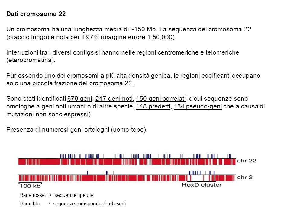 Barre rosse sequenze ripetute Barre blu sequenze corrispondenti ad esoni Dati cromosoma 22 Un cromosoma ha una lunghezza media di ~150 Mb. La sequenza