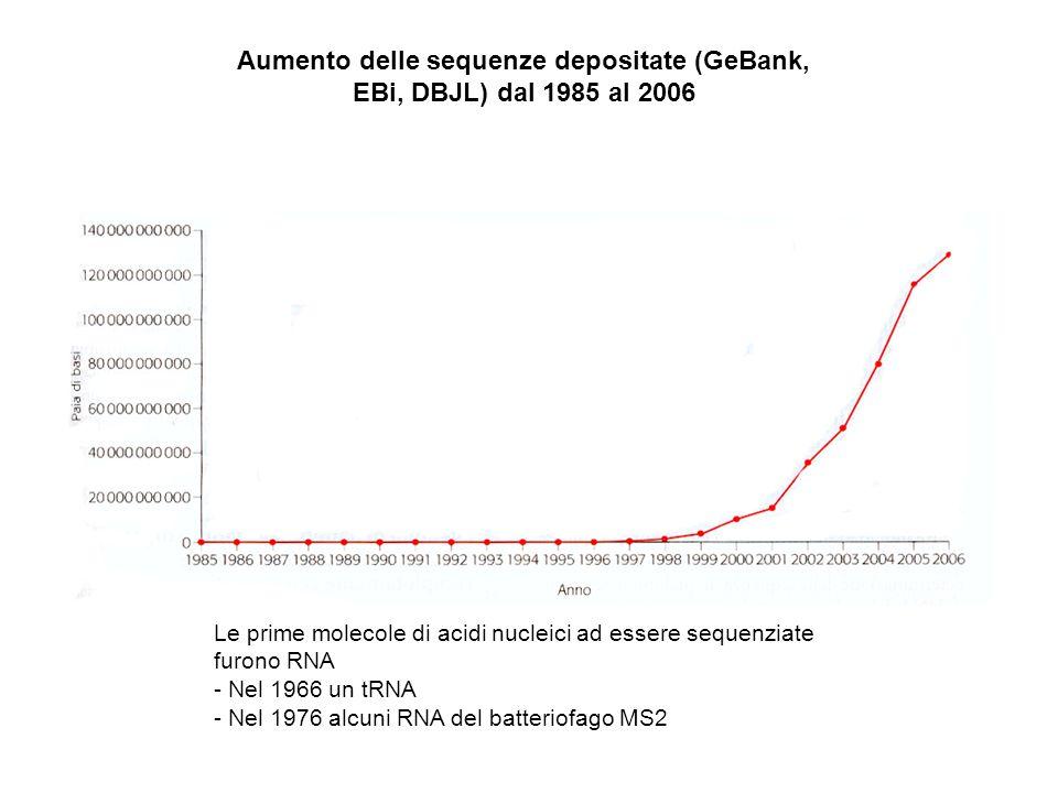 Aumento delle sequenze depositate (GeBank, EBi, DBJL) dal 1985 al 2006 Le prime molecole di acidi nucleici ad essere sequenziate furono RNA - Nel 1966 un tRNA - Nel 1976 alcuni RNA del batteriofago MS2