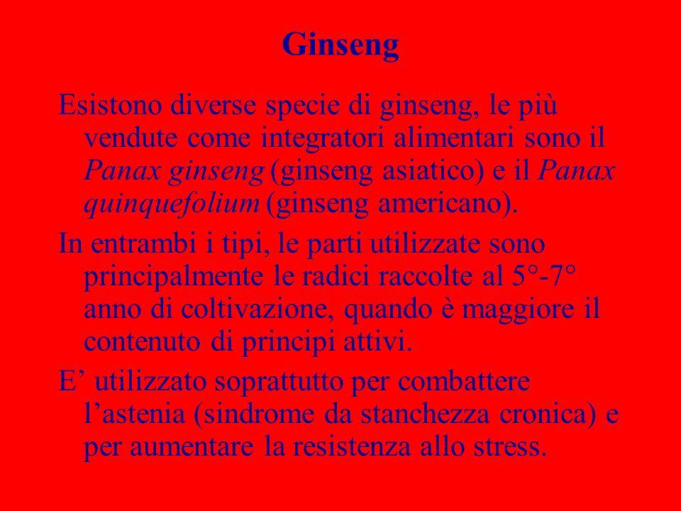 Ginseng Esistono diverse specie di ginseng, le più vendute come integratori alimentari sono il Panax ginseng (ginseng asiatico) e il Panax quinquefoli