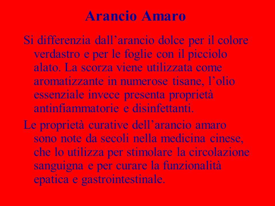Arancio Amaro Si differenzia dallarancio dolce per il colore verdastro e per le foglie con il picciolo alato. La scorza viene utilizzata come aromatiz