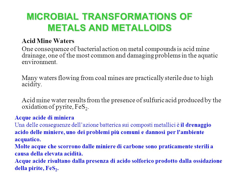 MICROBIAL TRANSFORMATIONS OF METALS AND METALLOIDS Acid Mine Waters One consequence of bacterial action on metal compounds is acid mine drainage, one