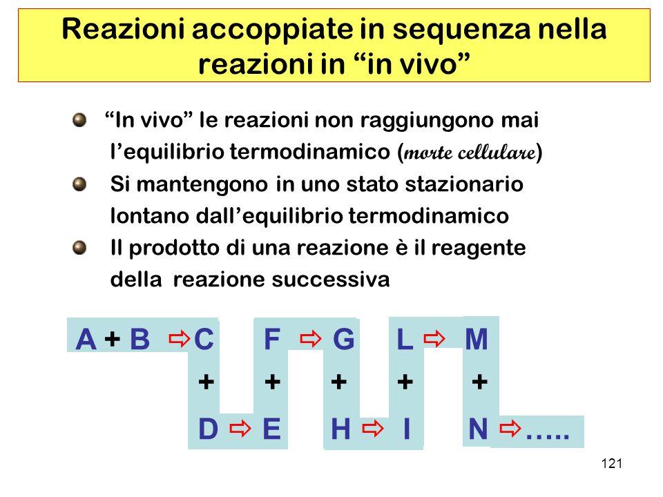 121 Reazioni accoppiate in sequenza nella reazioni in in vivo In vivo le reazioni non raggiungono mai lequilibrio termodinamico ( morte cellulare ) Si mantengono in uno stato stazionario lontano dallequilibrio termodinamico Il prodotto di una reazione è il reagente della reazione successiva A + B C F G L M + + + + + D E H I N …..