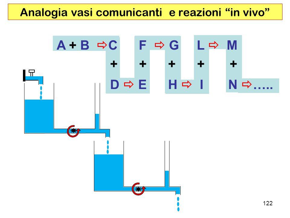 122 Analogia vasi comunicanti e reazioni in vivo A + B C F G L M + + + + + D E H I N …..