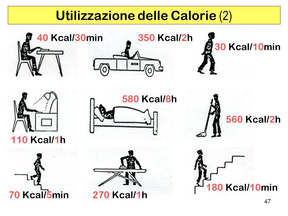 47 Utilizzazione delle Calorie (2) 40 Kcal/30min 270 Kcal/1h 560 Kcal/2h 350 Kcal/2h 30 Kcal/10min 180 Kcal/10min 110 Kcal/1h 70 Kcal/5min 580 Kcal/8h
