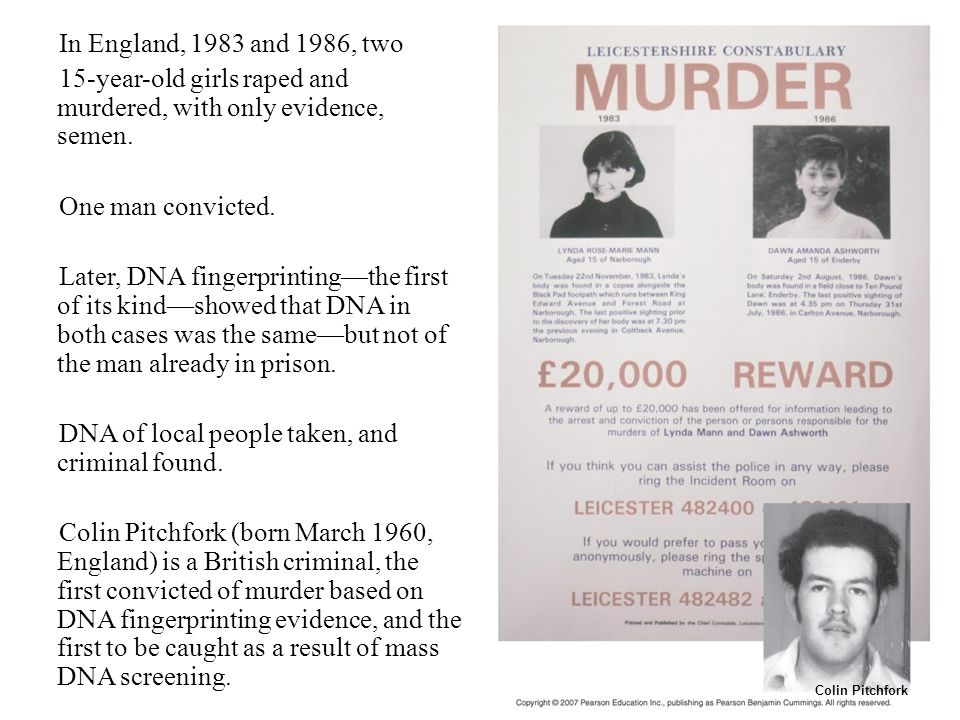 Figure 12.1 In England, 1983 and 1986, two 15-year-old girls raped and murdered, with only evidence, semen. One man convicted. Later, DNA fingerprinti