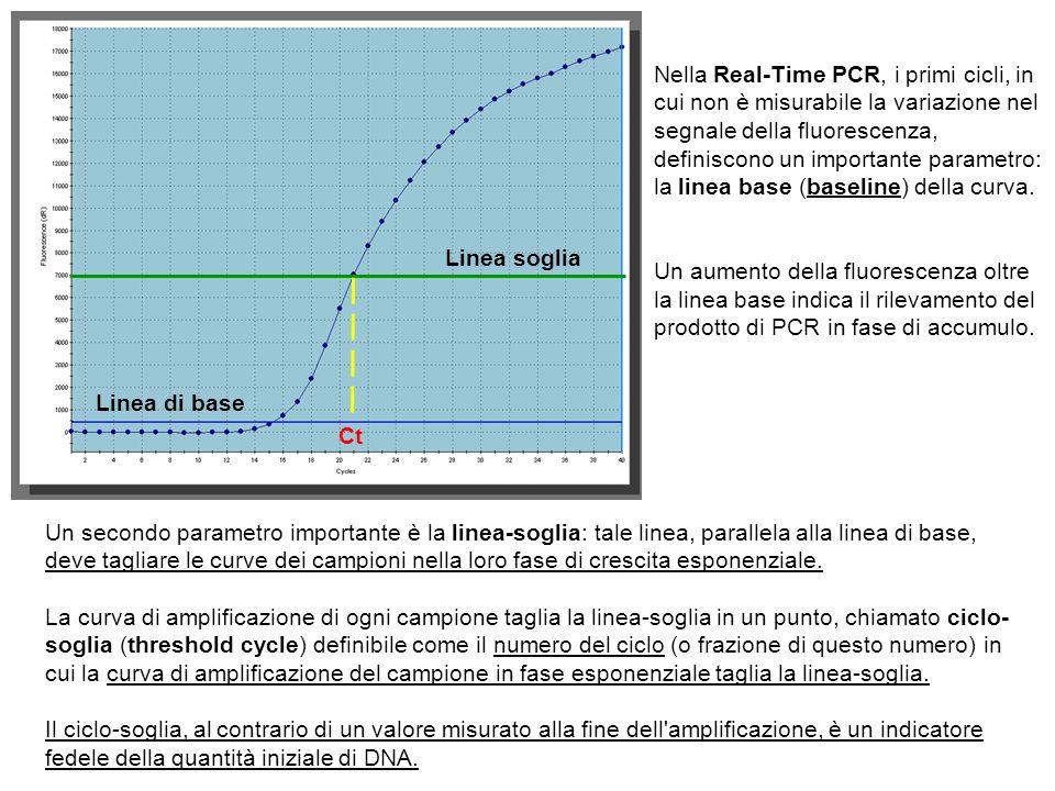 Linea di base Linea soglia Ct Nella Real-Time PCR, i primi cicli, in cui non è misurabile la variazione nel segnale della fluorescenza, definiscono un