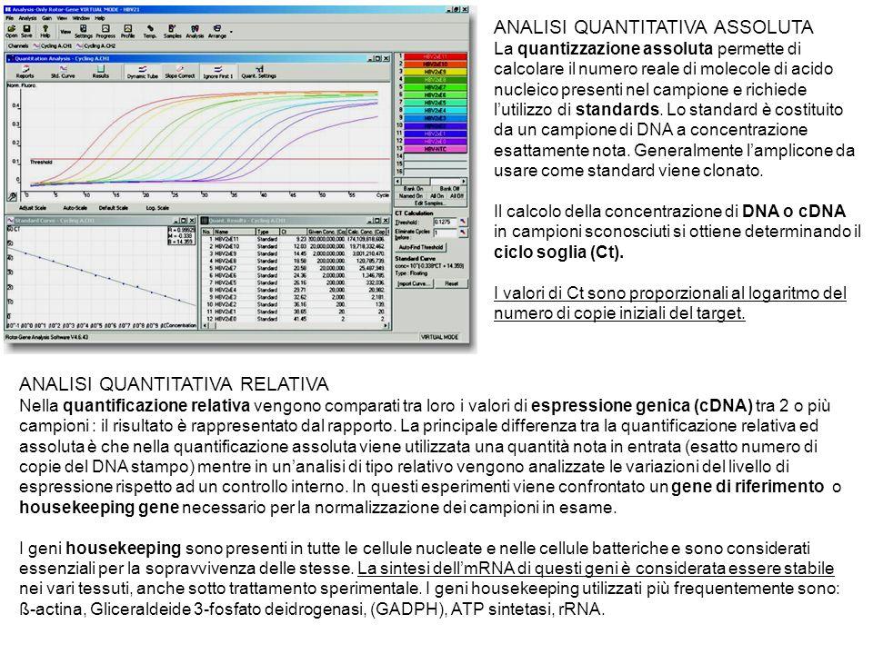 ANALISI QUANTITATIVA ASSOLUTA La quantizzazione assoluta permette di calcolare il numero reale di molecole di acido nucleico presenti nel campione e r