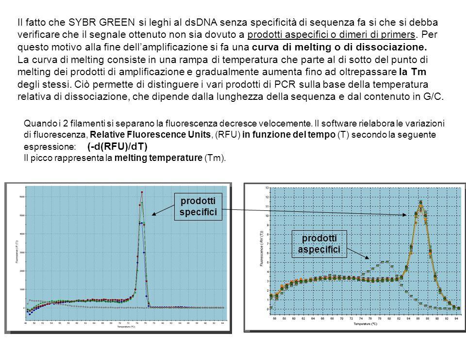 Il fatto che SYBR GREEN si leghi al dsDNA senza specificità di sequenza fa si che si debba verificare che il segnale ottenuto non sia dovuto a prodott