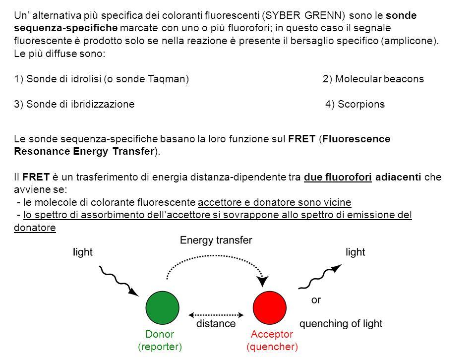 Un alternativa più specifica dei coloranti fluorescenti (SYBER GRENN) sono le sonde sequenza-specifiche marcate con uno o più fluorofori; in questo ca