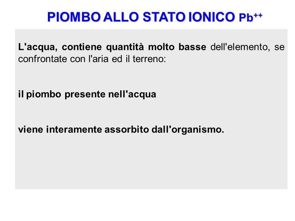 PIOMBO ALLO STATO IONICO Pb ++ Pb ++ rappresenta la forma ionica stabile del piombo ed è in questa forma che esso è presente in natura nei minerali da